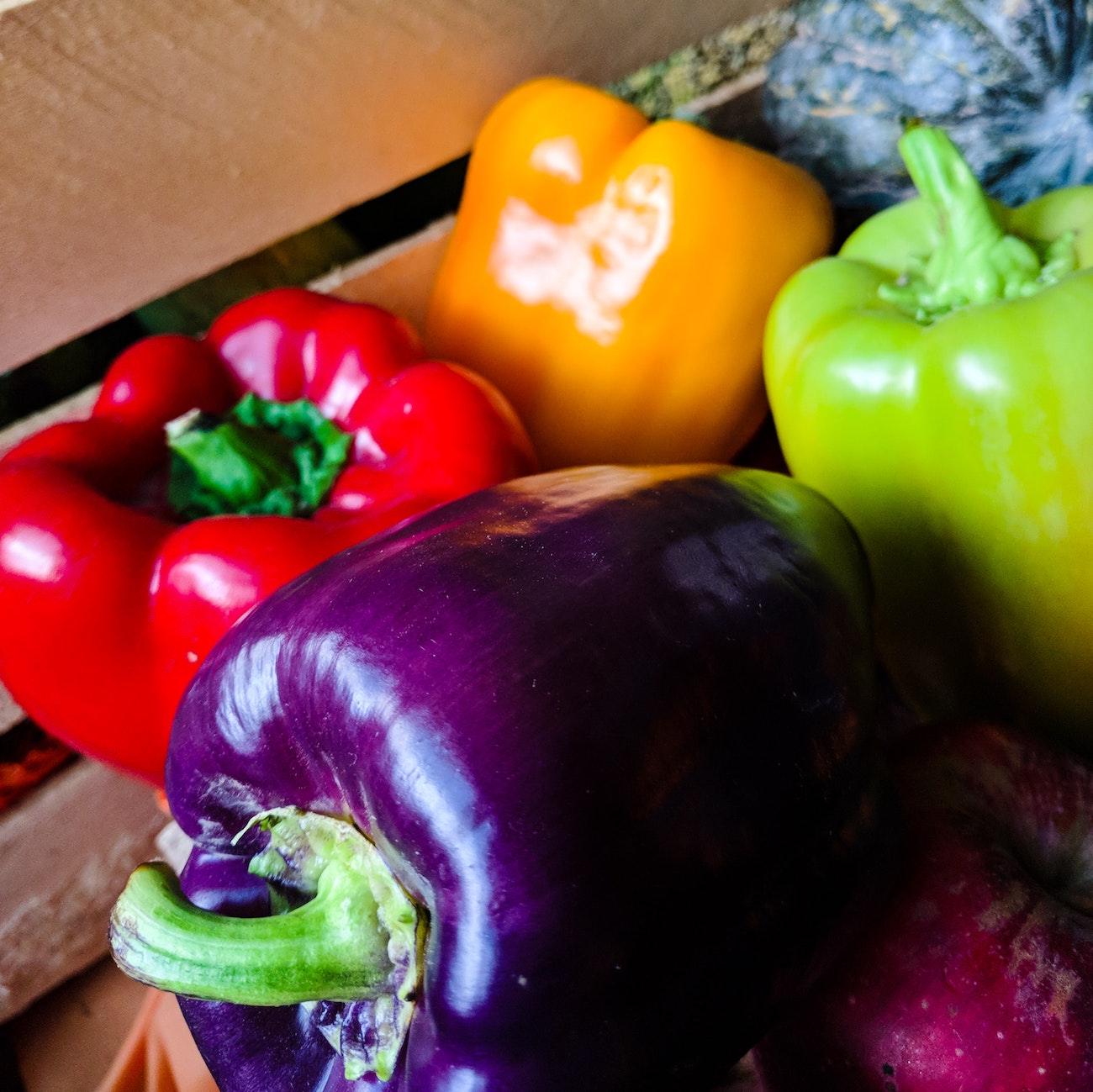 Plant based diet featuring a purple bell pepper, red bell pepper, orange bell pepper, and green bell pepper.